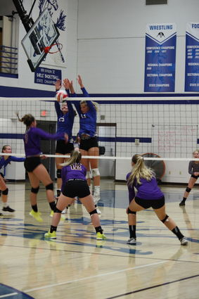 Ponies Volleyball Tops Barneveld - Post Messenger Recorder